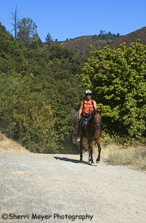 Man horseback riding on the Western States Trail, Auburn, CA