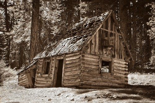 Plumas National Forest, Northern California, Old Log Cabin, Sherri Meyer Photography