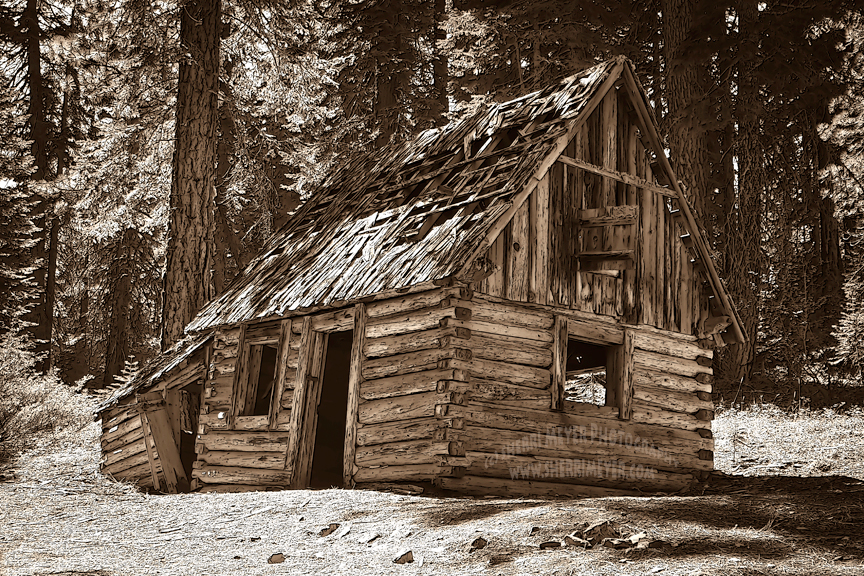 Log Home In The Woods ~ Plumas county rv trip — sherri meyer photography
