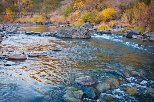 Sherri Meyer Photography, Auburn, California, American River